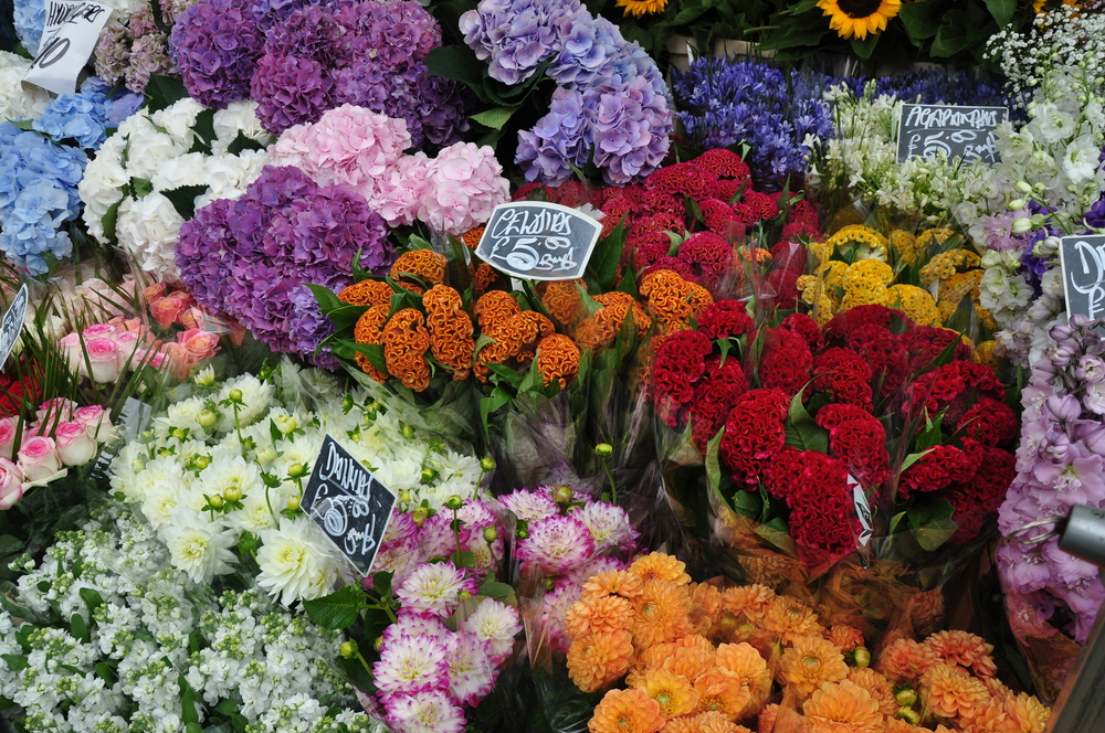 Columbia flower market1