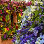 EVERYTHING YOU NEED TO KNOW ABOUT THE CHELSEA FLOWER SHOW